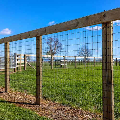 Kiwi Knot Horse Fencing wire in a fence