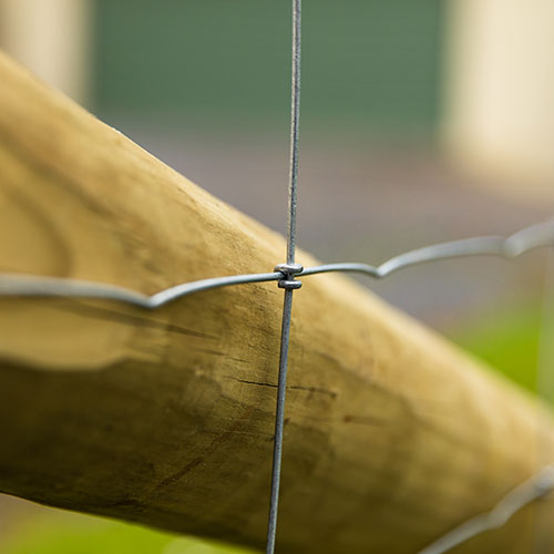 Kiwi Knot mesh fencing in a fence